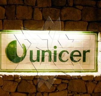 Visita de estudo Unicer e Fundação de Serralves